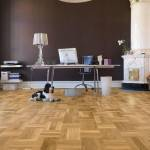 kontor med parkettgolv och hund